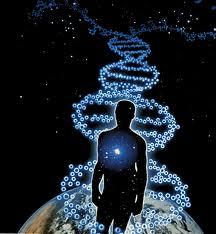 multidimensional DNA