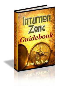 Intuition guide book